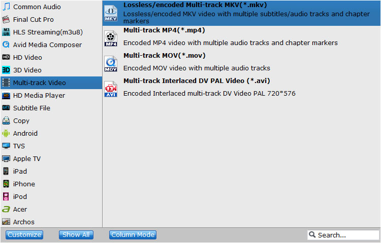 Multi-Track Video Output
