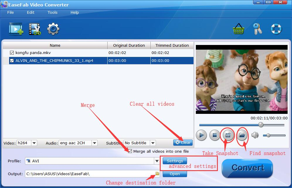 EaseFab Video Converter Interface